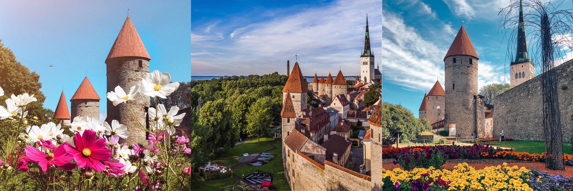 Tornien aukio, Tallinna Kuva: