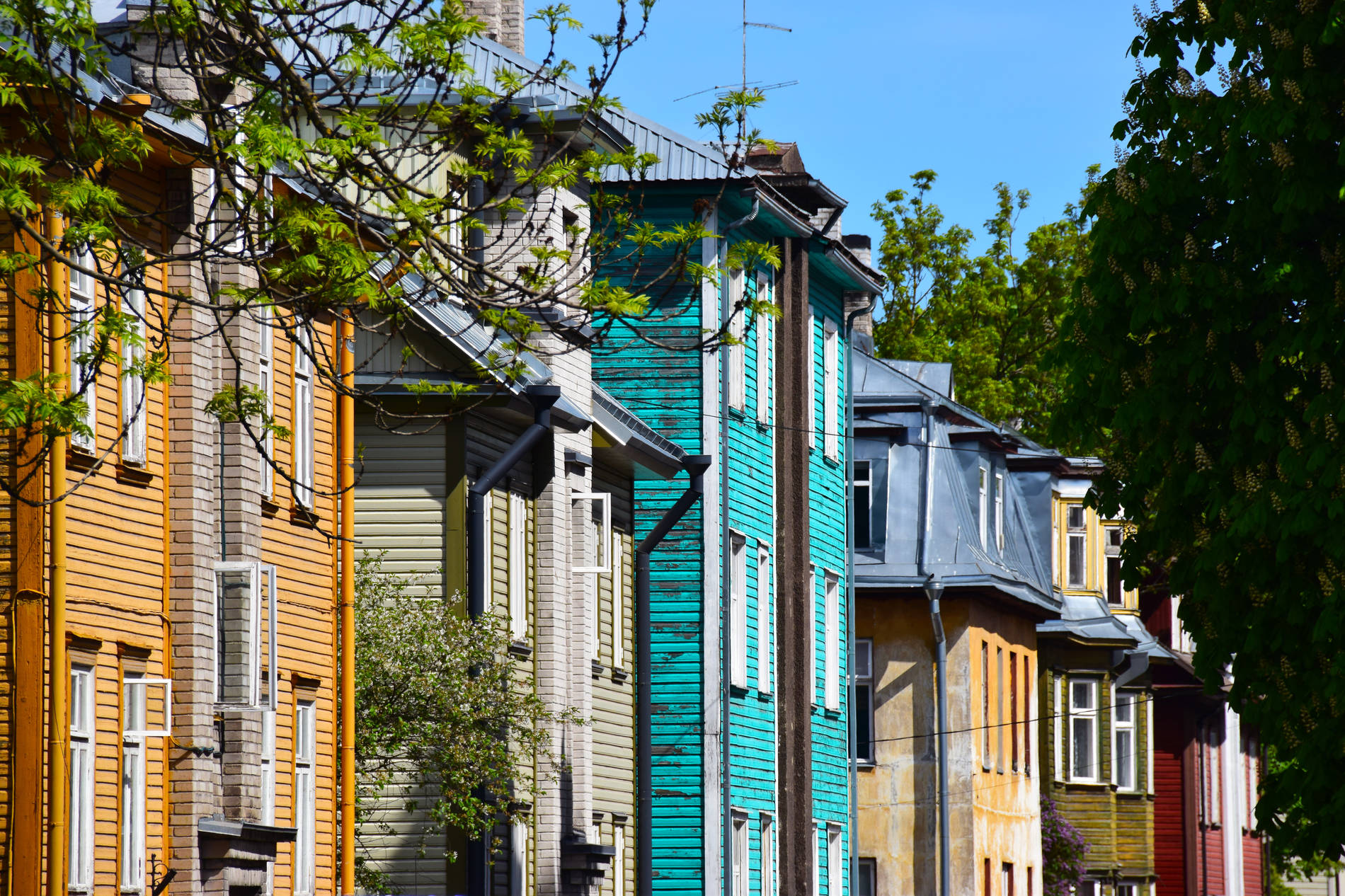 View of the colourful wooden houses from the Kalamaja region in Tallinn, Estonia. Photo by: Maret Põldveer-Turay
