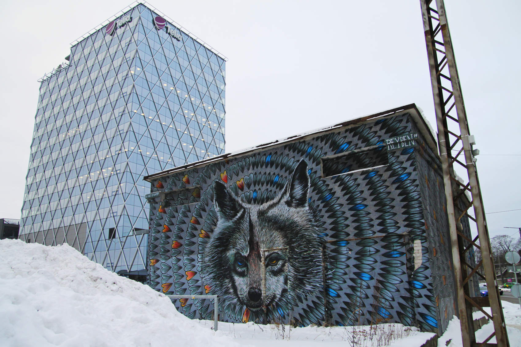 A wolf - street art by Reyben in Tallinn, Estonia Photo: Mairit Krabbi