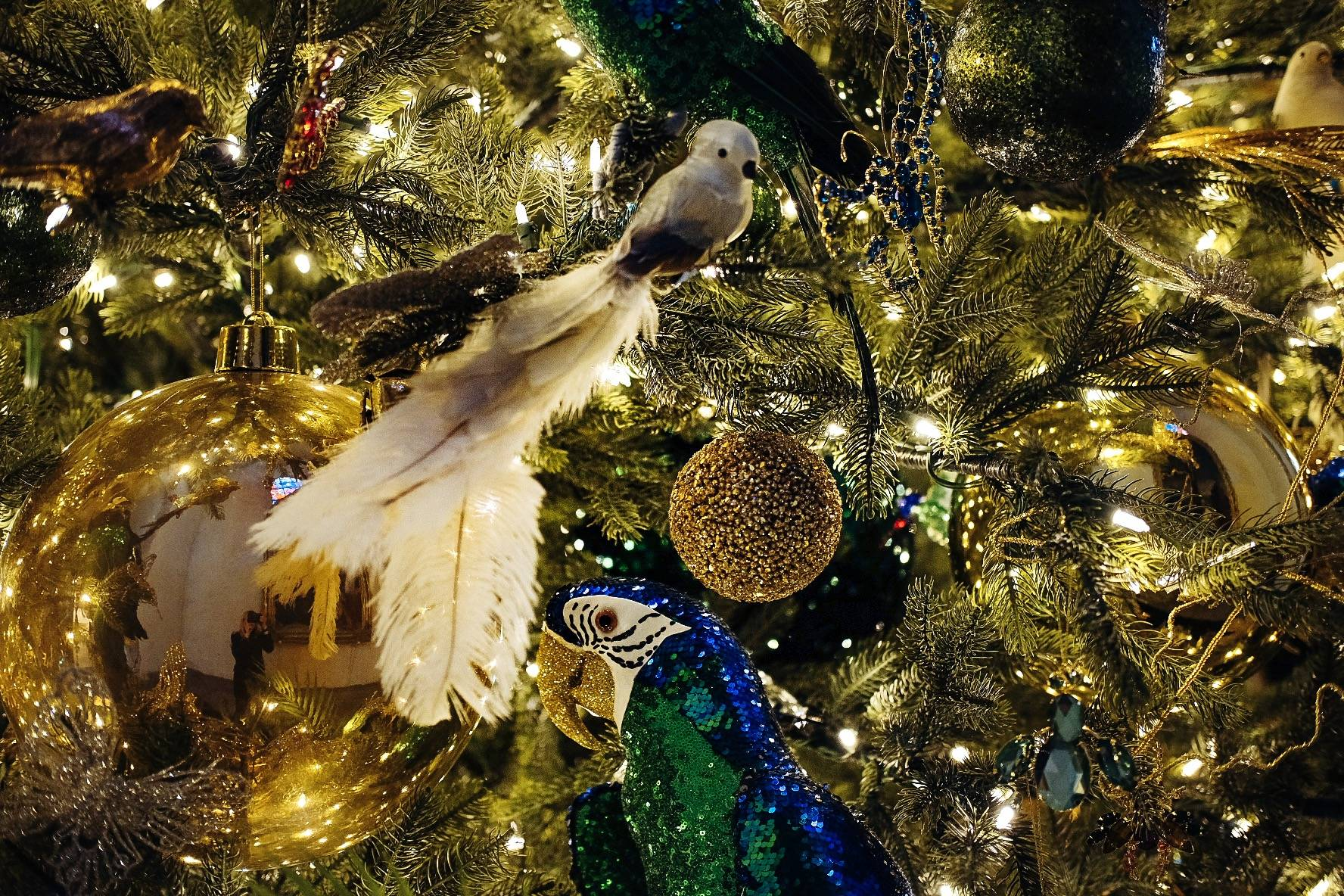 Sparkling birds and other Paradise-themed Christmas decorations by Shishi in the St Nicholas (Niguliste) Church in Tallinn, Estonia  Photo: Kadi-Liis Koppel